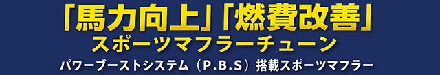 ガナドール P.B.S パワーブーストシステム
